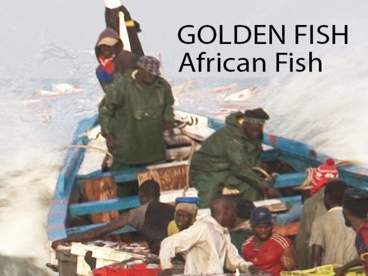 """Golden Fish, African Fish"": ciclo de Another Way Film Festival para mentes inquietas"